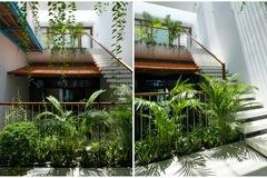 Ngôi nhà ống 4 tầng ở Nha Trang nhìn đâu cũng thấy cây