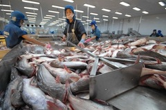Trung Quốc siết thủy sản, trái cây nhập khẩu