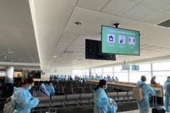 Sắp tổ chức chuyến bay trọn gói đưa người Việt về nước