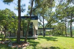Ngôi nhà trên đồi thông 'sống trong sự yên tĩnh'