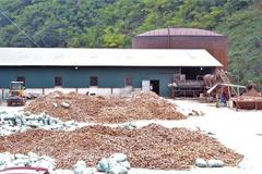 Tạm đình chỉ hoạt động nhà máy chế biến sắn ở Điện Biên