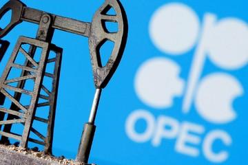 Kỳ vọng gì vào cuộc họp của OPEC+ ngày 30/11 - 1/12