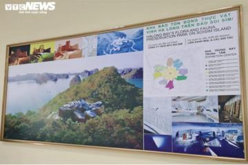 Quảng Ninh: Dự án đảo Soi Sim chậm tiến độ, đổi chủ, nợ tiền ngân sách