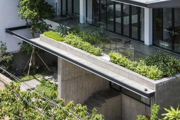 Đất rộng để làm gì: Xây một biệt thự thật to rồi trồng thật nhiều cây xanh bất chấp nắng hướng Tây