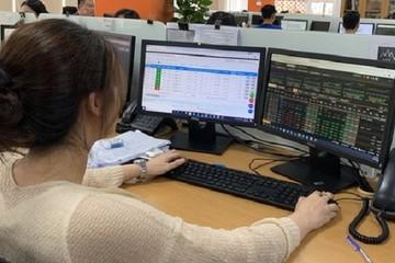 Thị trường chứng khoán và cơ hội cho 'người đến sau'