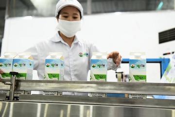 Mộc Châu Milk chào bán cho cổ đông chiến lược giá 30.000 đồng/cp