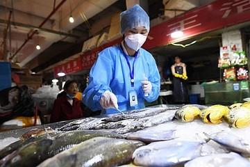 Trung Quốc kêu gọi điều tra về các đường lây lan khác của Covid-19