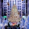 <p> Cây thông Noel tại Rockefeller Plaza ở thành phố New York. Ảnh: <em>Roy Rochlin/Getty Images</em></p>