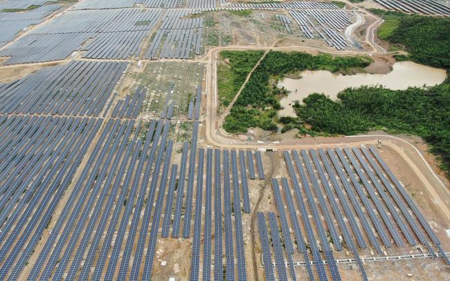 Licogi 16 thu về hơn 1.100 tỷ từ dự án điện mặt trời KN Vạn Ninh, doanh thu 2020 ước đạt 3.580 tỷ đồng