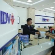 BIDV rao bán khoản nợ 232 tỷ của Hàm Rồng với giá giảm một nửa