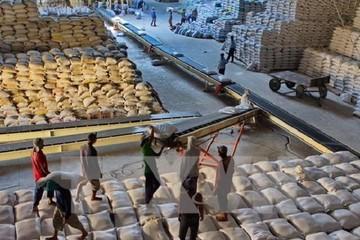 Giá gạo Việt Nam giao dịch ở mức cao nhất trong 9 năm