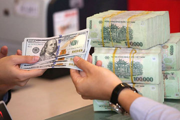 Ngân hàng Nhà nước bất ngờ điều chỉnh phương án mua ngoại tệ