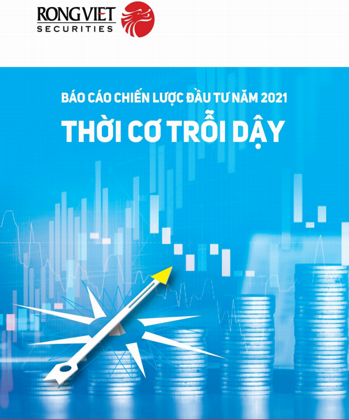VDSC: Báo cáo chiến lược đầu tư năm 2021 - Thời cơ trỗi dậy