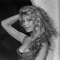 <p> Năm 2010, hãng đồ da của Pháp - Lancel - ra mắt chiếc túi lấy cảm hứng từ huyền thoại Brigitte Bardot. Giám đốc sáng tạo Leonello Borghi cho biết mẫu phụ kiện chính là hình ảnh của nữ minh tinh với đường cong nóng bỏng thể hiện bằng chất liệu mềm mại, tua rua đính bên hông như mái tóc vàng nổi bật. Trong khi đó, họa tiết sọc vuông ở thân là điểm yêu thích của Brigitte Bardot. Ảnh: <em>Vogue.</em></p>