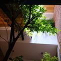 <p> Cách duy nhất để tạo ra một không gian sống thực sự nếu bạn muốn đón gió và nắng vào nhà là lấy bớt một phần diện tích xây dựng.</p>