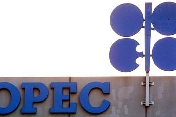 Kỳ vọng gì vào cuộc họp của OPEC+ ngày 4/1