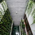 <p> Với tinh thần đó, các kiến trúc sư cho biết không cố ý tạo ra sự khác biệt. Họ muốn hòa vào nhịp sống của đường phố bằng khoảng lùi, độ cao, hình thức, vật liệu và cây cối trong bối cảnh đương đại.</p>