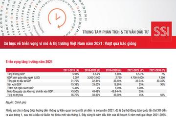 SSI Research: Sơ lược về triển vọng vĩ mô và thị trường Việt Nam năm 2021- Vượt qua bão giông