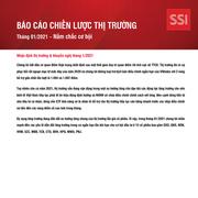 SSI Research: Báo cáo chiến lược thị trường tháng 1/2021 - Nắm chắc cơ hội