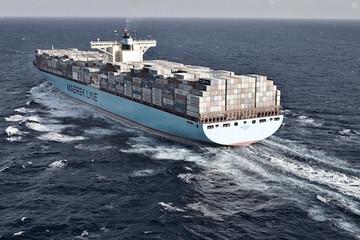 Maersk: 'Cước vận chuyển container chưa đạt đỉnh'