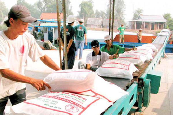 Sẽ chấm điểm uy tín nhà thầu cung cấp gạo dự trữ quốc gia