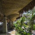 <p> Đáng chú ý, những cây dừa được sử dụng nguyên dạng để làm cổng vào và các lều riêng.</p>
