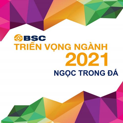 BSC: Triển vọng ngành 2021 - Ngọc trong đá