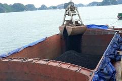 Việt Phát đặt kế hoạch lợi nhuận 2021 tăng 14% lên 100 tỷ đồng