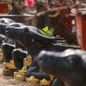 <p> Những gốc bích đào cổ đựng trong chậu hình con trâu ôm tiền vàng được bày bán dọc đường Lạc Long Quân (quận Tây Hồ) là sản phẩm đắt hàng trong năm nay của anh Phạm Văn Quân, chủ vườn ở phường Phú Thượng (quận Tây Hồ).</p>