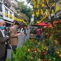 <p> Chợ hoa Hàng Lược - chợ hoa lâu đời nhất thủ đô - đã bắt đầu hoạt động. Nhiều mặt hàng đa dạng được bày bán phục vụ nhu cầu sắm Tết của người dân Hà Nội.</p>