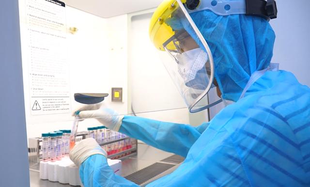 Việt Nam phát hiện chủng virus biến thể mới SARS-CoV-2 của Nam Phi