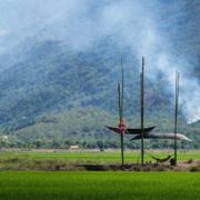 Những chiếc thuyền úp ngược trên đồng ruộng Khánh Hòa