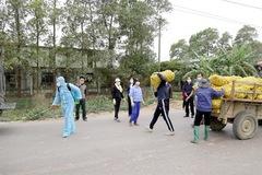 Quảng Ninh kêu gọi tiêu thụ nông sản cho nông dân vùng dịch