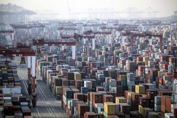 Giao thương thực phẩm thế giới 'chao đảo' vì thiếu container
