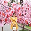 <p> Nhiều bạn trẻ đã kịp tới hội hoa và lưu lại từng khoảnh khắc đẹp khi Tết đến xuân về.</p>