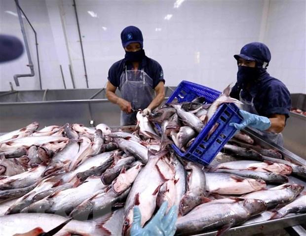 Campuchia đồng ý nối lại việc nhập khẩu một số loại cá từ Việt Nam