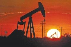 Các quỹ đầu cơ đặt cược vào 'sự trở lại của dầu thô'
