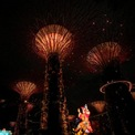 <p> Covid-19 vẫn đang hoành hành trên thế giới với sự xuất hiện của các biến chủng virus corona có khả năng lây nhiễm mạnh hơn. Do ảnh hưởng của đại dịch, nhiều hoạt động đón năm mới tại châu Á phải giảm quy mô hoặc tổ chức trực tuyến.<br /><br /> Trong ảnh là tượng Thần Tài tại Gardens by the Bay, Singapore, đêm 11/2. <span>Ảnh: <em>Reuters.</em></span></p>