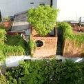 <p> Ngôi nhà tại Hà Nội được thiết kế cho gia đình 4 thành viên muốn tạo ra một nơi yên bình và hài hòa trong thành phố bận rộn. Diện tích khu đất tương đối nhỏ, chỉ 64 m2, bao gồm 4 m x16 m. Tuy nhiên, các kiến trúc sư đã thiết kế nó như một khu vườn với cây ăn quả và rau, sử dụng tối đa cây xanh.</p>