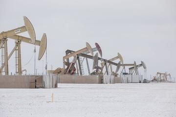 Sản lượng dầu Mỹ giảm kỷ lục vì thời tiết lạnh