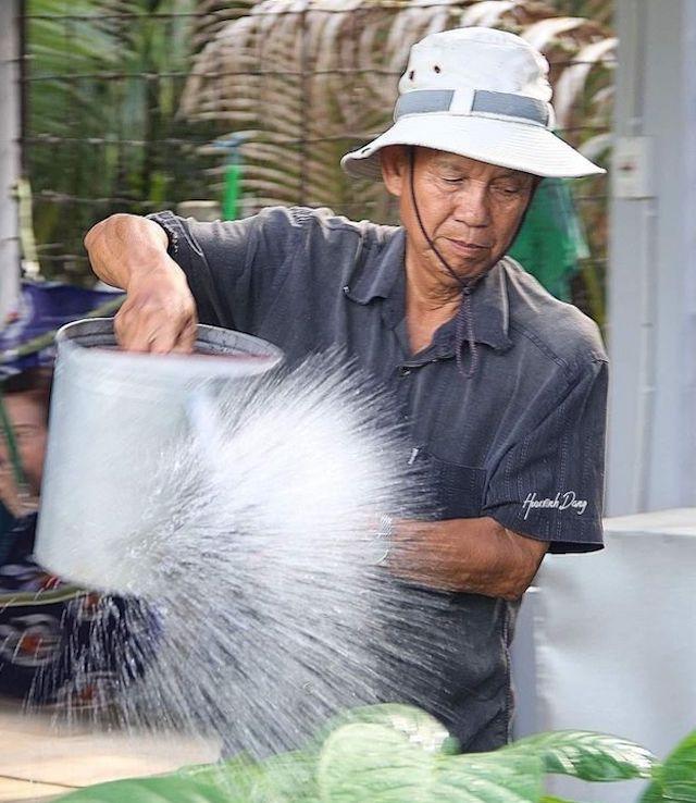Nguyên Phó thủ tướng Trương Vĩnh Trọng làm vườn ở quê nhà từ khi về hưu.
