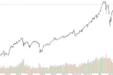 Xu thế dòng tiền: Đồng thuận vượt đỉnh?