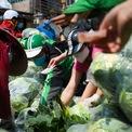 <p> Khi rau vừa được chuyển xuống, hàng chục người ồ ạt lao vào mua khiến việc giãn cách không được thực hiện. Chị Thuỷ cùng nhóm nỗ lực kêu gọi mọi người nhưng không có hiệu quả.</p>