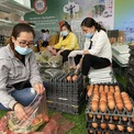 <p> Trứng được bán với giá 70.000 đồng/vỉ 30 quả hoặc 25.000 đồng/10 quả.</p>
