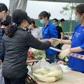 <p> Người dân thường lựa chọn những mặt hàng rau củ theo vụ, mùa như củ cải, cà chua, su hào...</p>