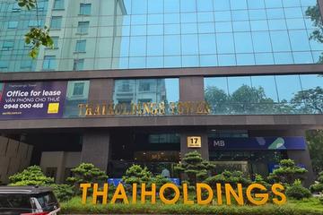 Bán nhà máy xi măng và phân bón, Thaiholdings dự thu 1.050 tỷ đồng