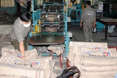 Vicem Bao bì Bỉm Sơn đặt kế hoạch lợi nhuận quý I giảm 62% so với cùng kỳ