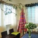 <p> Trong nhà, Dương Anh làm khá nhiều cây thông Noel. Cây được quấn bằng rơm, cây lại được làm từ ruy băng.</p>