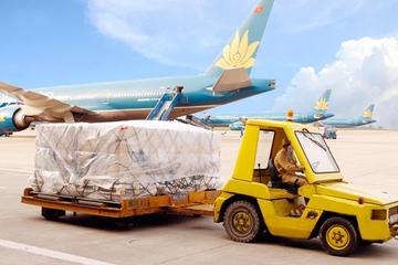 Noibai Cargo tạm ứng tiếp cổ tức tiền mặt 30%