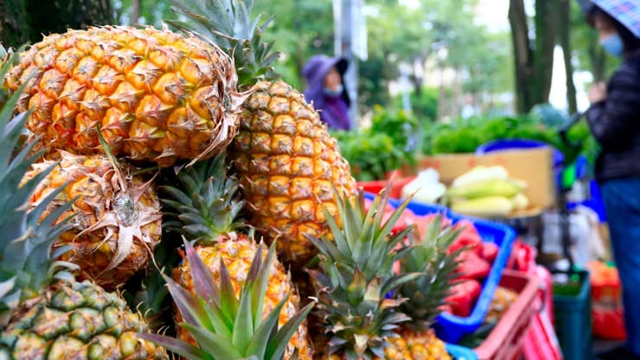 A hawker selling pineapples seen in the street of Taipei. As China bans the import of Taiwan pineapples, leaders of Taiwan are urging its people to buy more pineapples to help minimize the impact on farmers.